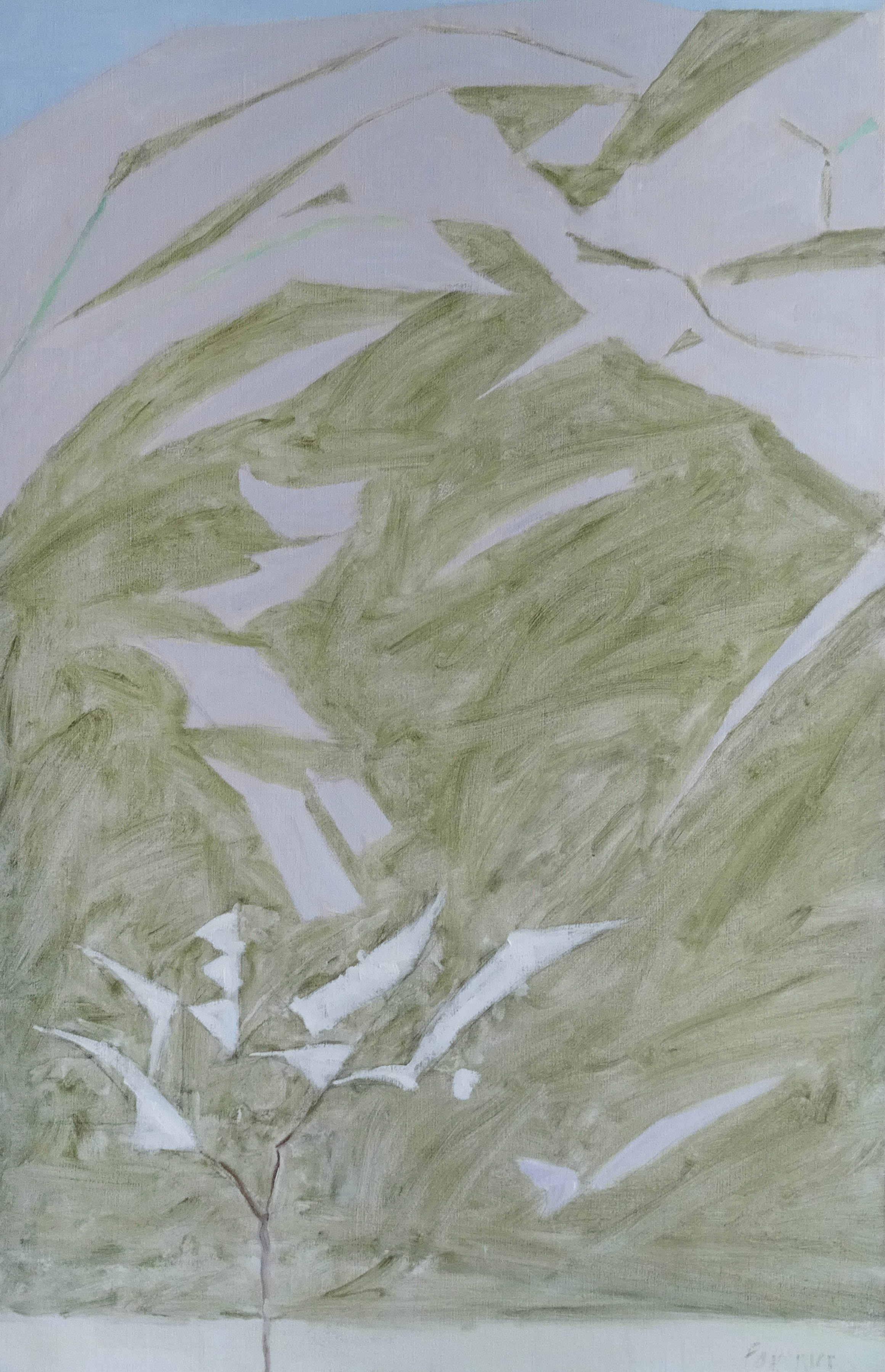 amandier blanc 2000